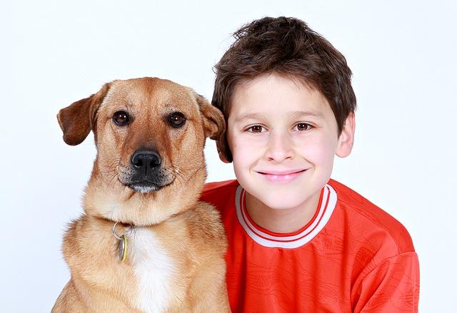 Маленькие собачки хорошо ладят с детьми