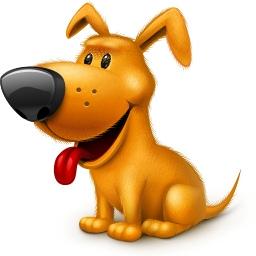 БИГЛЬ: описание породы и характер собаки